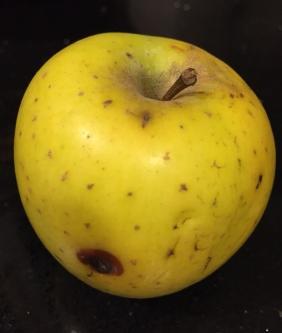 mela buco